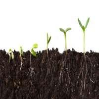 Soil Nutrients Manufacturers