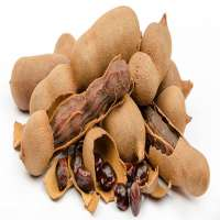 Tamarind Flavour Importers