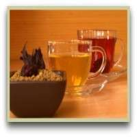 Fenugreek Tea Importers