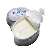 加工的奶油芝士 制造商