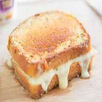 奶酪三明治 制造商