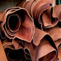 Raw Leather Manufacturers