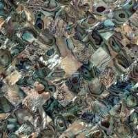 鲍鱼壳瓷砖 制造商