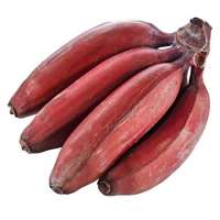Red Banana Manufacturers