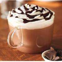 Hot Chocolate Premix Manufacturers