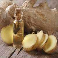 Ginger Oil Manufacturers
