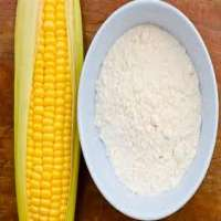 Maize Starch Manufacturers