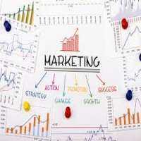Marketing Strategy Development Manufacturers