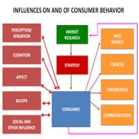 消费者行为研究 制造商