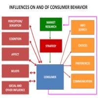 Consumer Behaviour Studies Manufacturers