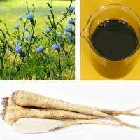 Chicory Extract Manufacturers
