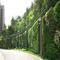 Vertical Garden Landscaping Services Manufacturers