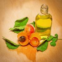 杏子油 制造商