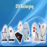 DTH Recharge Software Importers
