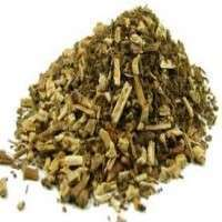 Patchouli Herb Manufacturers
