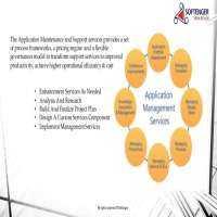 企业应用维护服务 制造商