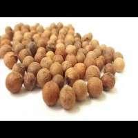 檀香籽 制造商