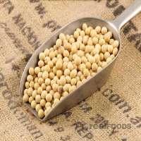 Organic Bean Manufacturers