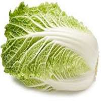 Chinese Cabbage Manufacturers