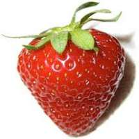 Strawberry Manufacturers