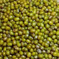 Green Moong Importers