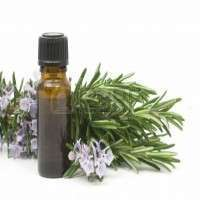 Rosemary Oleoresin Manufacturers