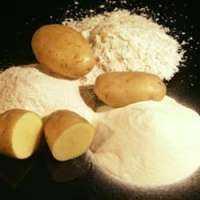 Potato Powder Manufacturers