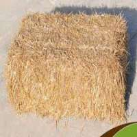 Wheat Straw Manufacturers