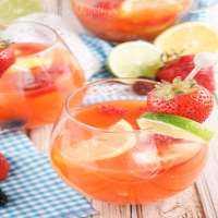Fruit Mocktails Manufacturers