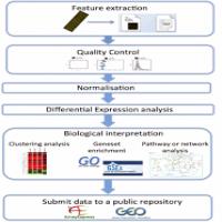Microarray Data Analysis Manufacturers
