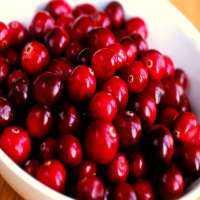 新鲜的蔓越莓 制造商