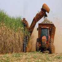 Sugarcane Cutting Machine Manufacturers