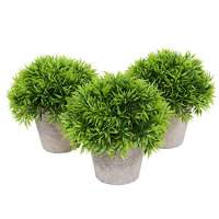 Decorative Plant Manufacturers