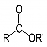 Carboxylic Acid Manufacturers