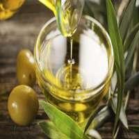 特级初榨橄榄油 制造商