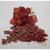 Grape Seed Capsule Manufacturers
