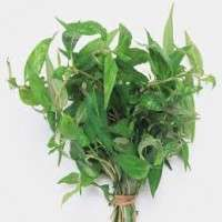 Cooking Herbs Manufacturers