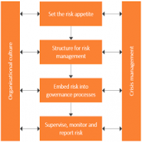 Information Risk Management Services Manufacturers