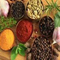 Indian Herbs Manufacturers
