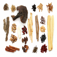 Chinese Herb Manufacturers
