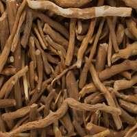 Ashwagandha Roots Manufacturers