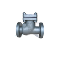 Leader Check Valve Manufacturers