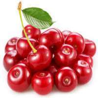 Fresh Cherries Manufacturers