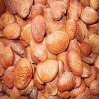 Karanja种子 制造商