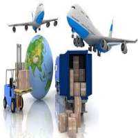 Export Freight Forwarding Importers