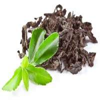Black Tea Extract Manufacturers