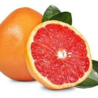 Grapefruit Manufacturers