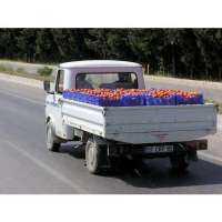 Vegetables Transportation Services Manufacturers