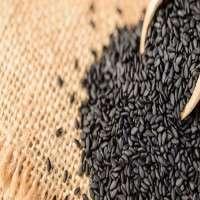 黑芝麻籽 制造商