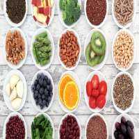 Plant Food Manufacturers